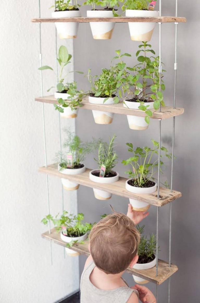 21 Stunning Indoor Wall Herb Garden Ideas