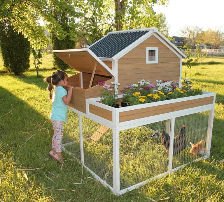 32+ Creative Chicken Coop Decor Ideas - Page 8 of 34